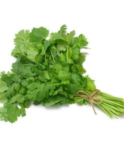 coriander-leaves-dublin
