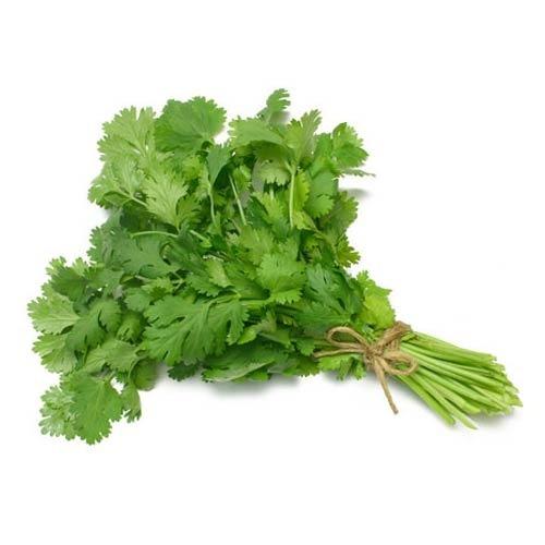coriander-leaves-dublin