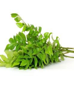 curry-leaves-dublin