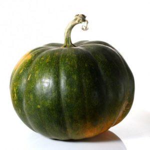 pumpkin-dublin