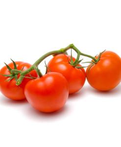 tomato-dublin